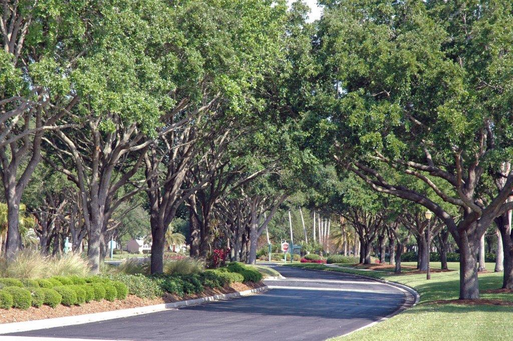 sarasota landscaping services