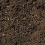 YOUR CHOICE OF MULCH SAYS MUCH ABOUT YOU.