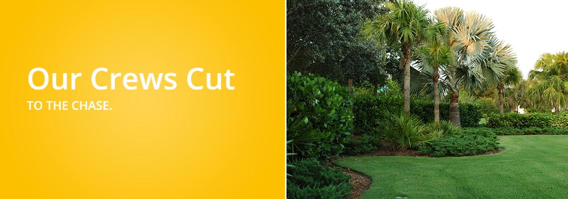 Cuts Grass