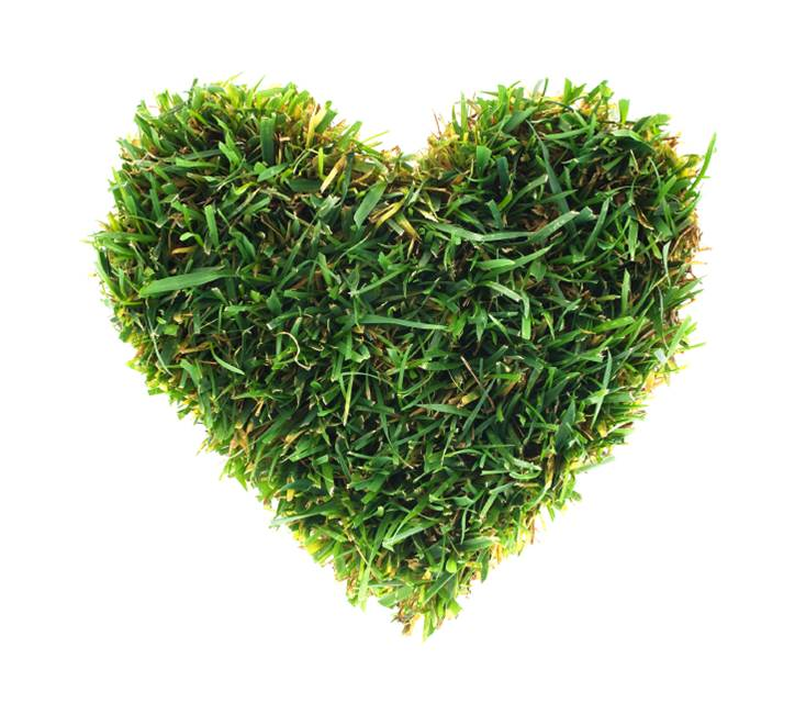 sod cut in a heart shape