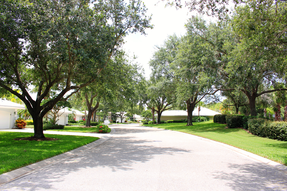 Residential street in Venice, Florida