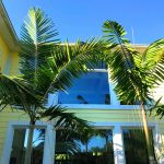 Montgomery Palms Are Growing Popular in Southwest Florida