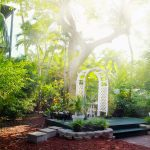 Reduce Your Stress with a Florida-Style Landscape in Two Easy Steps