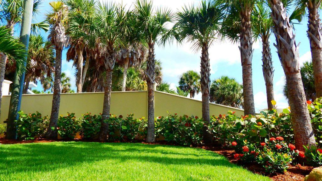 Sarasota landscape designers