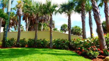 Sarasota Landscape Designers at ArtisTree Earn Builder Accolades