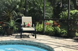 Lanai Landscaping in Sarasota: Think Outside the Pool Cage