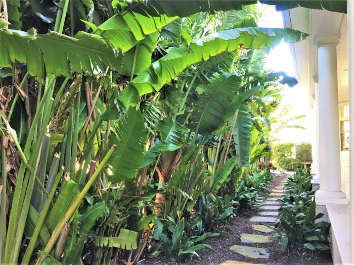 Florida Travelers Palms Siesta Key residence